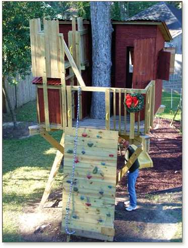 Kauri treehouse design with climbing wall