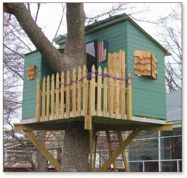Single Tree Tree House Plans House Plans