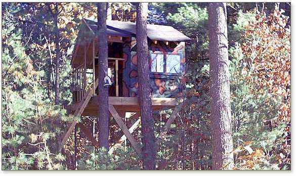 Camouflaged Zelkova treehouse in woods